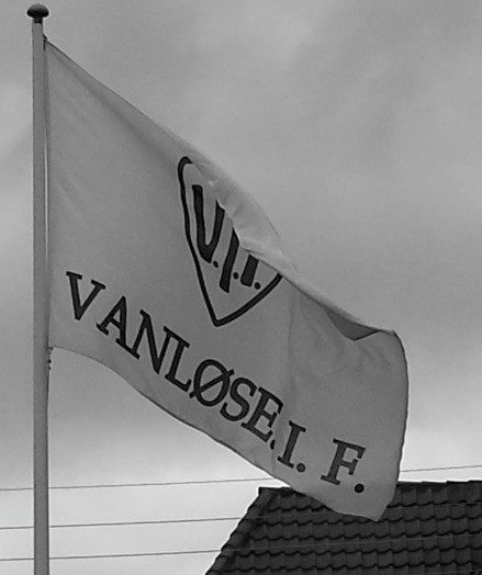 Flags are everywhere in Denmark...
