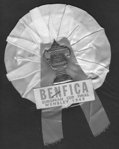 Benfica rossette (239x300)