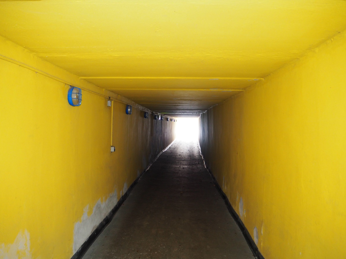 The long players' tunnel